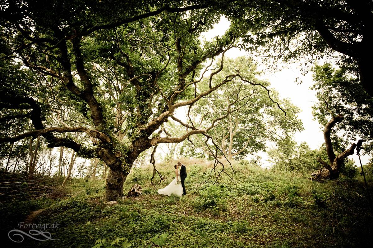 Måske Danmarks bedste bryllupsfotograf